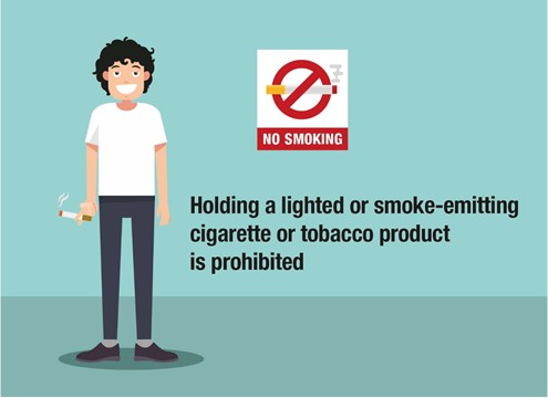 should smoking be prohibited in public places
