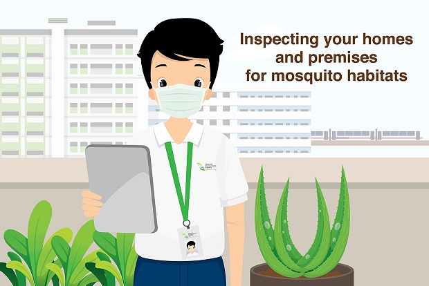 Dengue Inspections_banner_resized