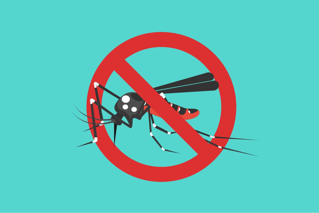 NEA | Dengue & Zika